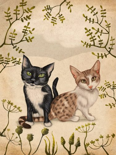 Illustration of cats Dolly and Vienne